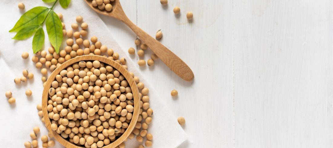ADM to acquire Sojaprotein 1